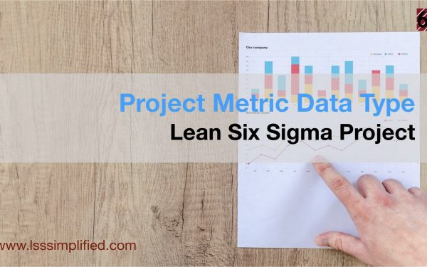 Project Metric Data Type for Lean Six Sigma Project